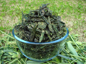 Kale Chips - Raw Living Foods